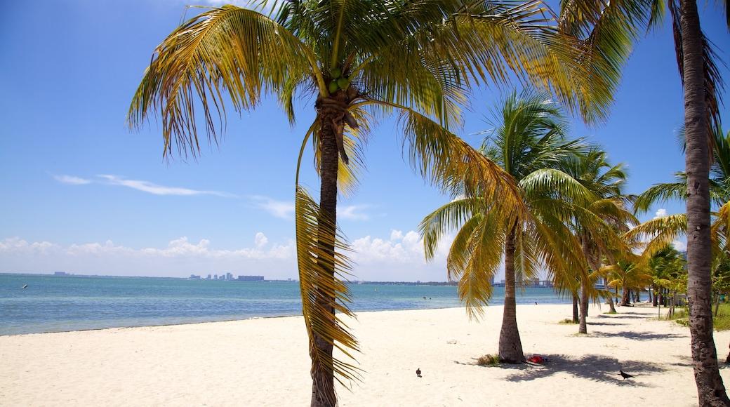 Key Biscayne bevat een kuststadje, tropische uitzichten en een strand