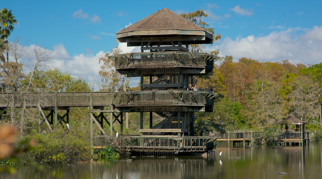 Gatorland® showing forest scenes, a pond and a garden