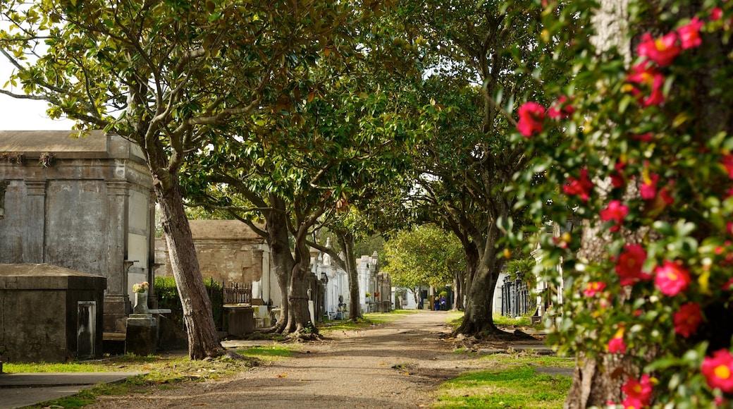 Lafayette Cemetery welches beinhaltet Landschaften, Blumen und Friedhof