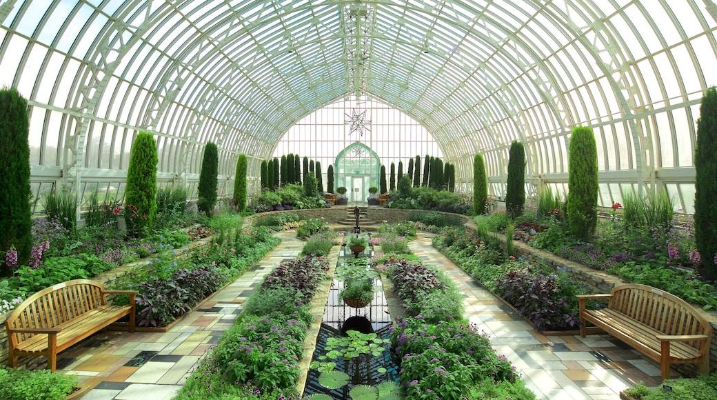 Como Park Zoo and Conservatory mettant en vedette parc et vues intérieures