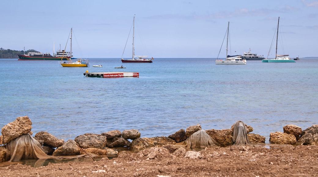 Vanuatu mit einem Bucht oder Hafen