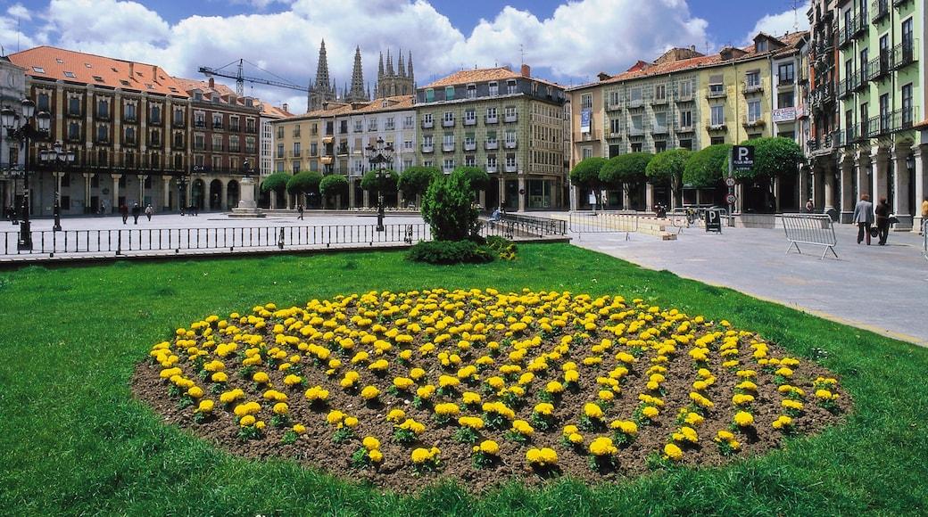 Burgos qui includes parc