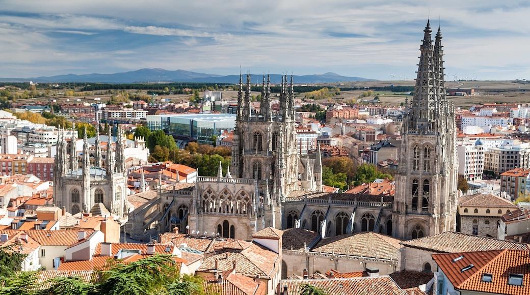 Burgos qui includes ville, panoramas et patrimoine architectural