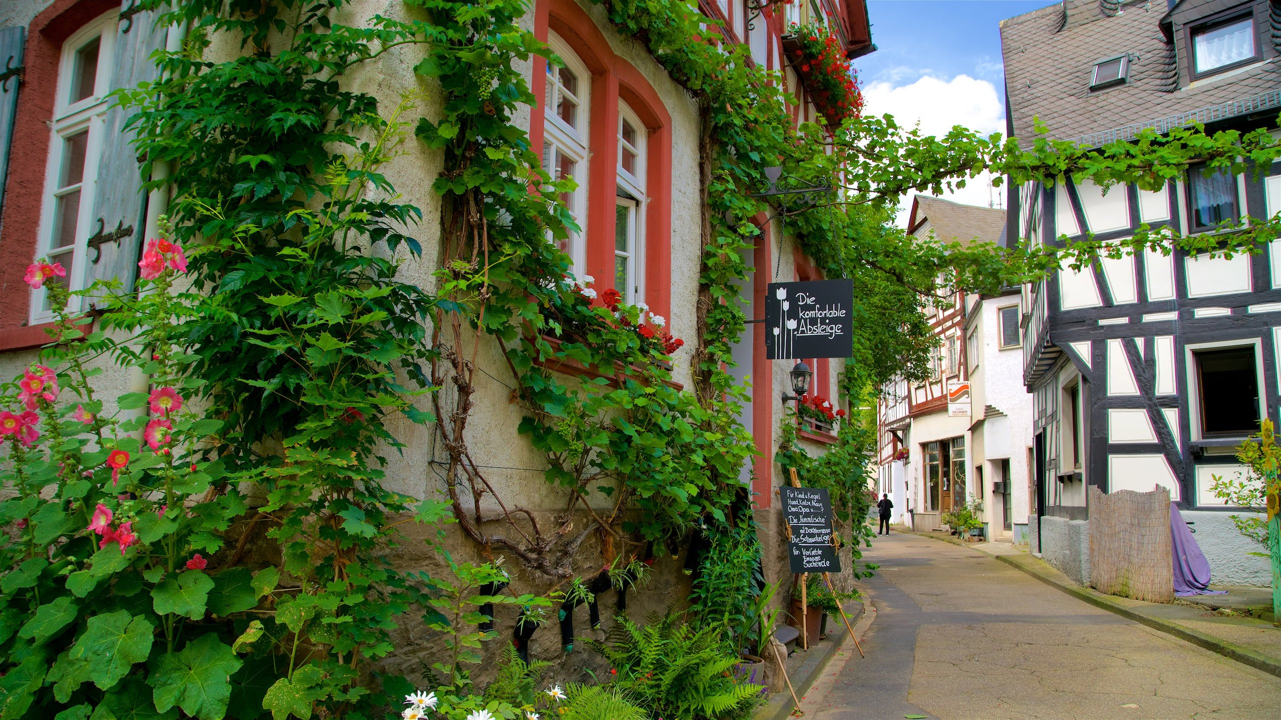 Braubach, Rijnland-Palts, Duitsland