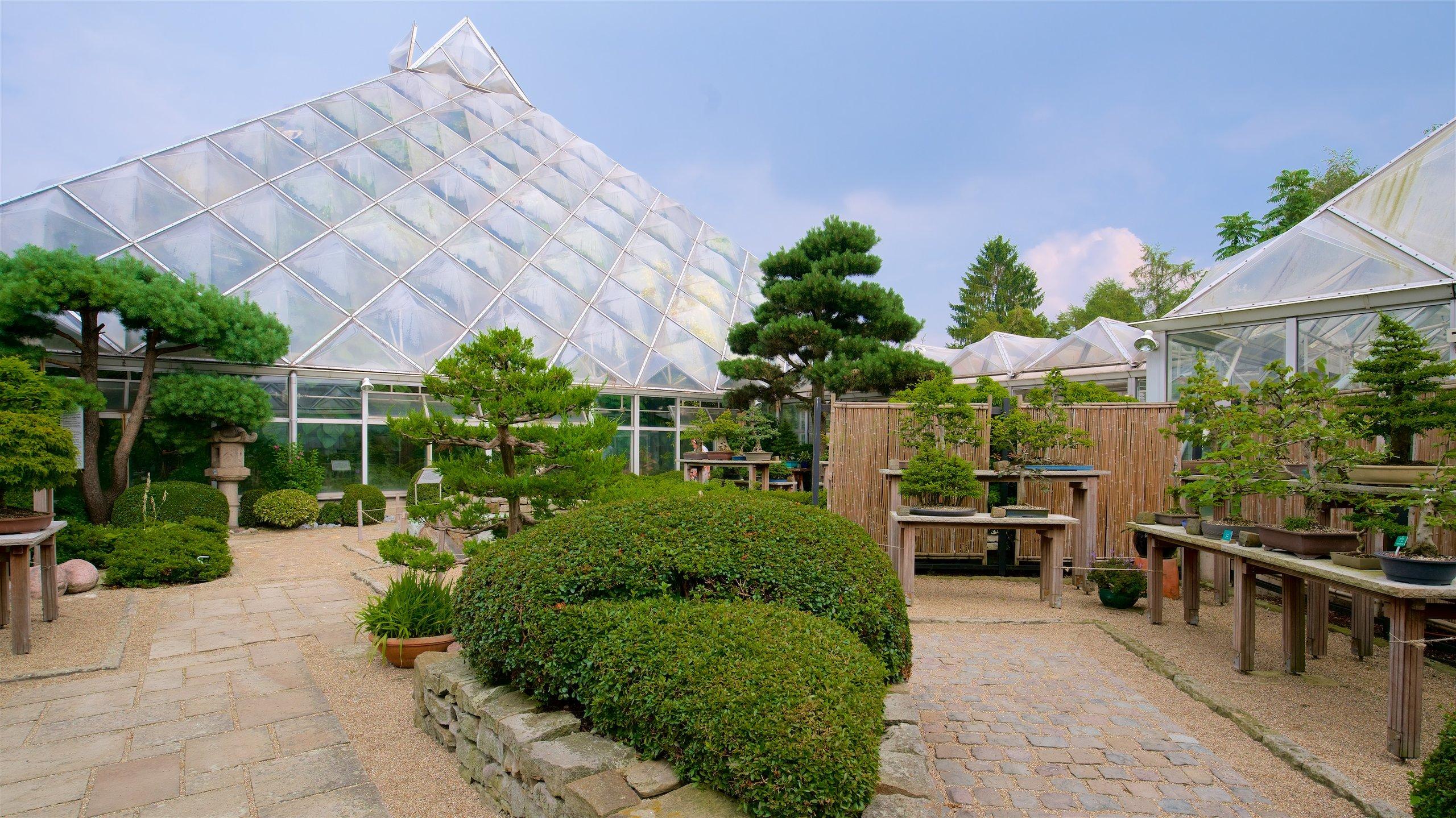 Botanischer Garten Grugapark, Essen, Noordrijn-Westfalen, Duitsland