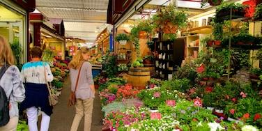 Altstadt mit einem Blumen und Märkte sowie kleine Menschengruppe