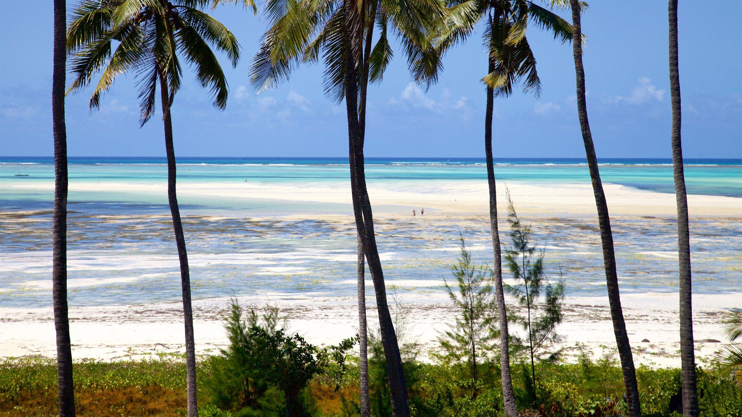 Kusini, Centraal- en Zuid-Zanzibar, Tanzania