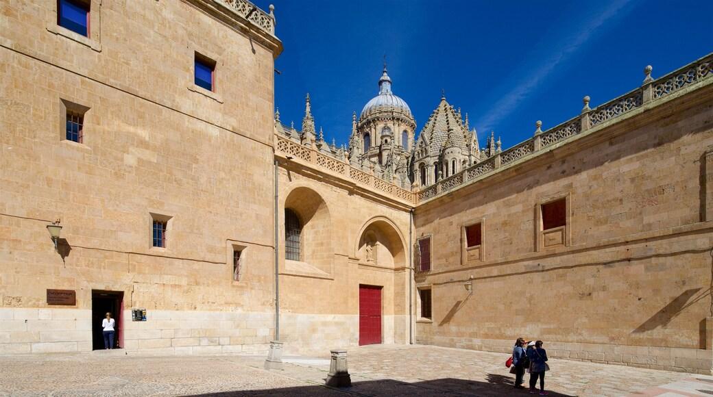 Alte Kathedrale von Salamanca