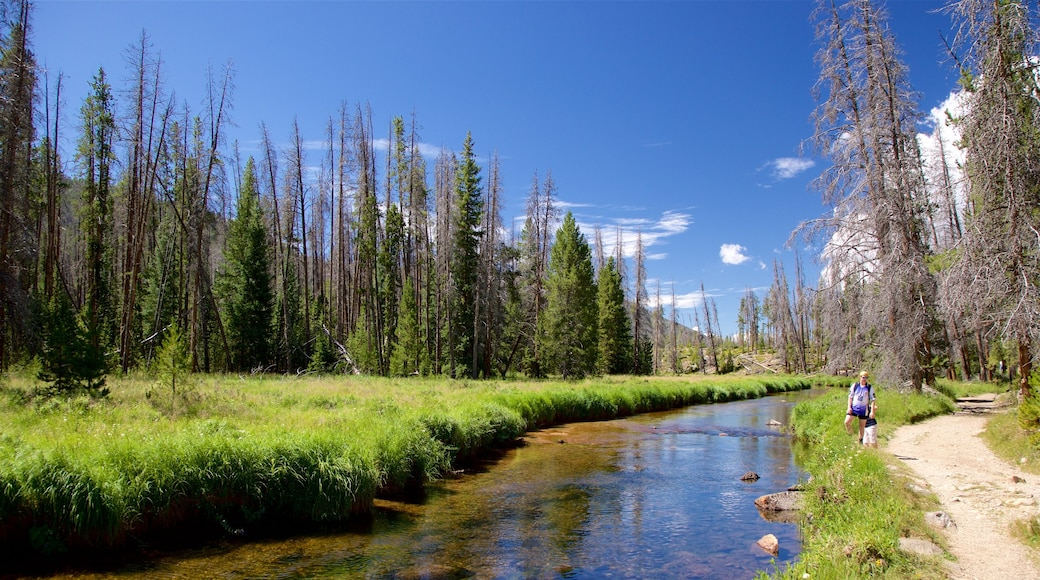 Estes Park which includes hiking or walking, a river or creek and tranquil scenes