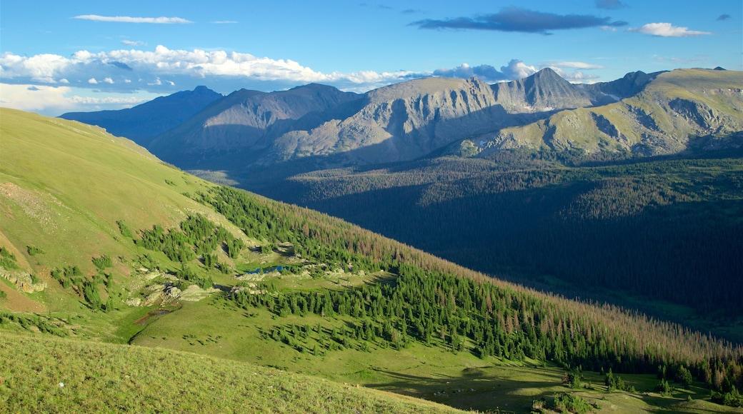 Estes Park featuring tranquil scenes, landscape views and mountains