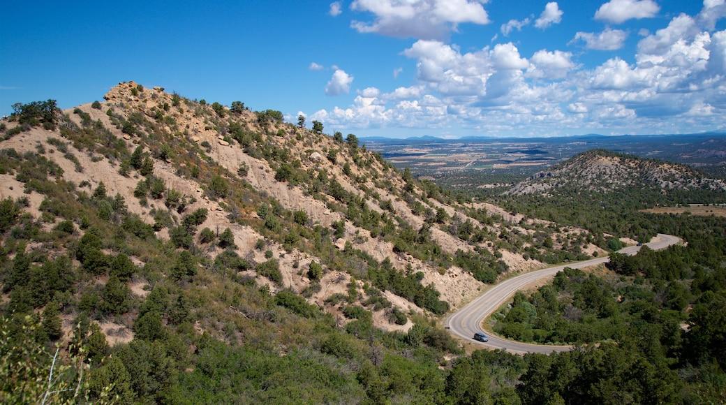 Parque Nacional Mesa Verde que incluye vista panorámica y escenas tranquilas