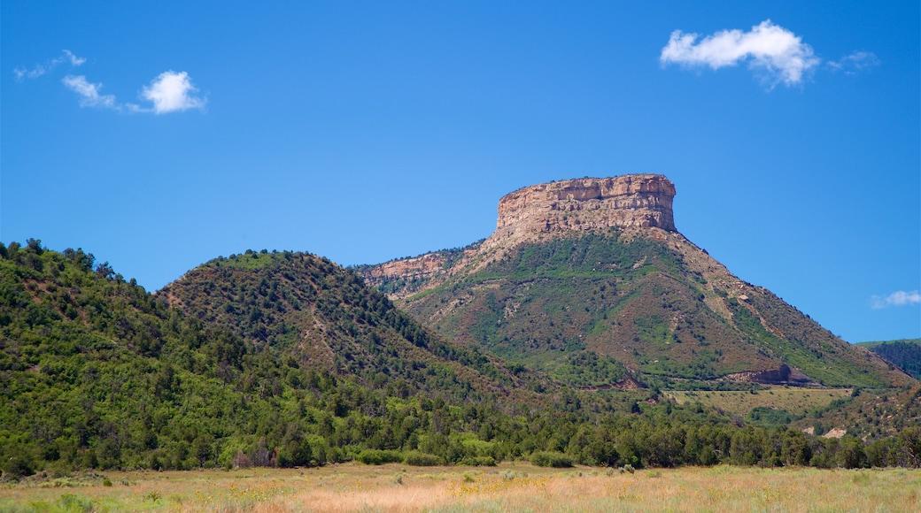 Parque Nacional Mesa Verde ofreciendo vista panorámica, montañas y escenas tranquilas
