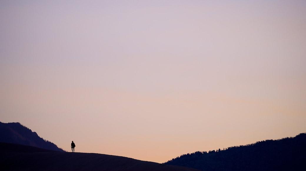 Parc national de Great Sand Dunes mettant en vedette coucher de soleil et scènes tranquilles aussi bien que homme
