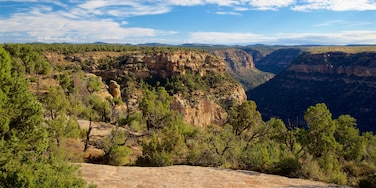 Mesa Verde National Park featuring landscape views, a gorge or canyon and tranquil scenes