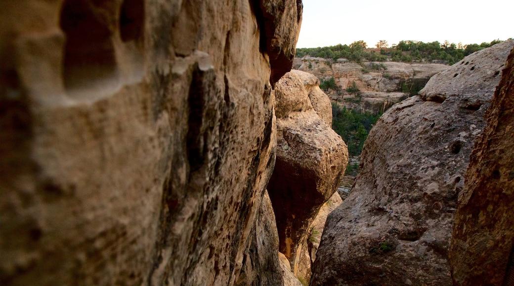 Parque Nacional Mesa Verde mostrando escenas tranquilas