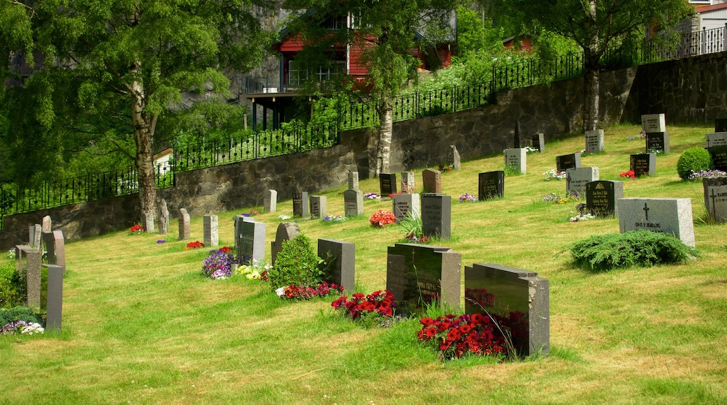 Alesund - More og Romsdal which includes flowers and a cemetery