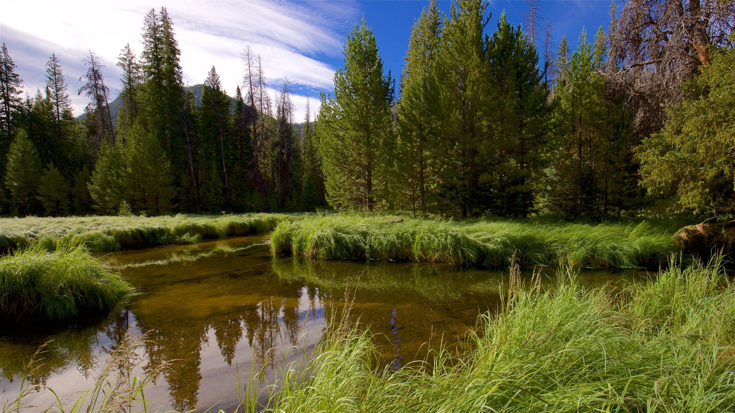 Grand Lake, Colorado, United States of America