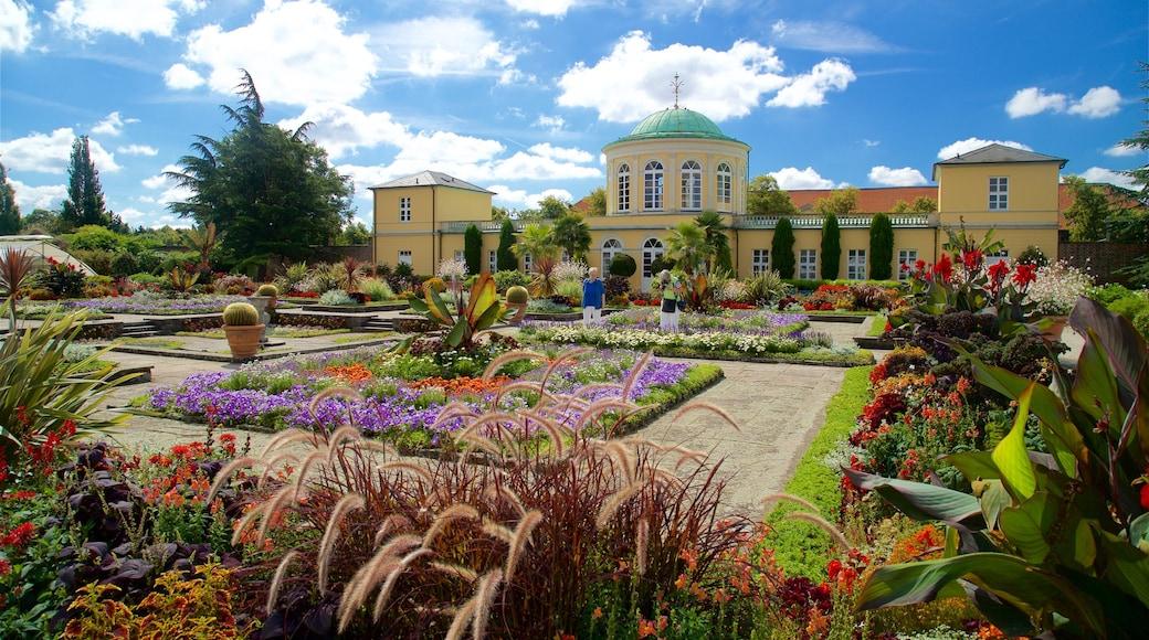 Berggarten inclusief wilde bloemen en een tuin
