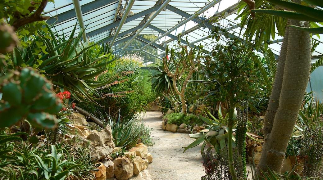 Berggarten showing a garden and interior views