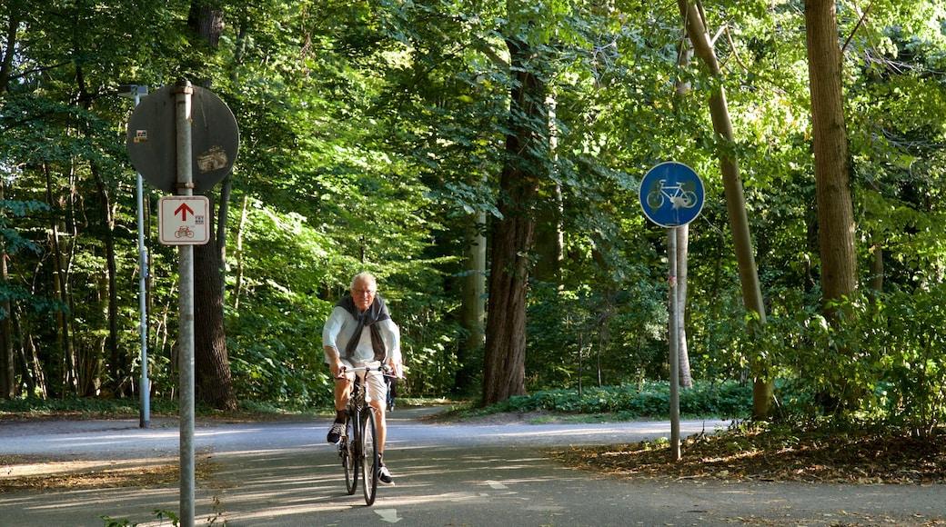 Eilenriede mit einem Fahrradfahren und Garten