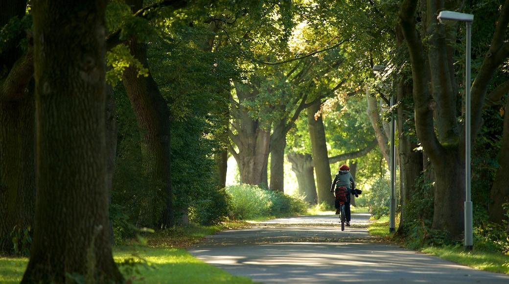 Maschsee mit einem Garten und Fahrradfahren