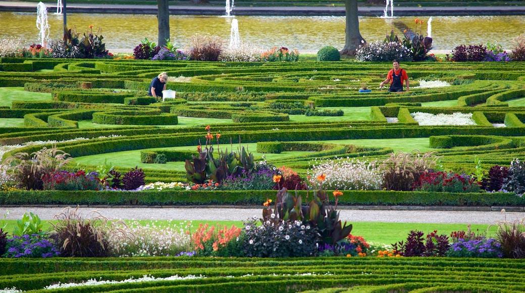 Herrenhäuser Gärten das einen Garten und Wildblumen