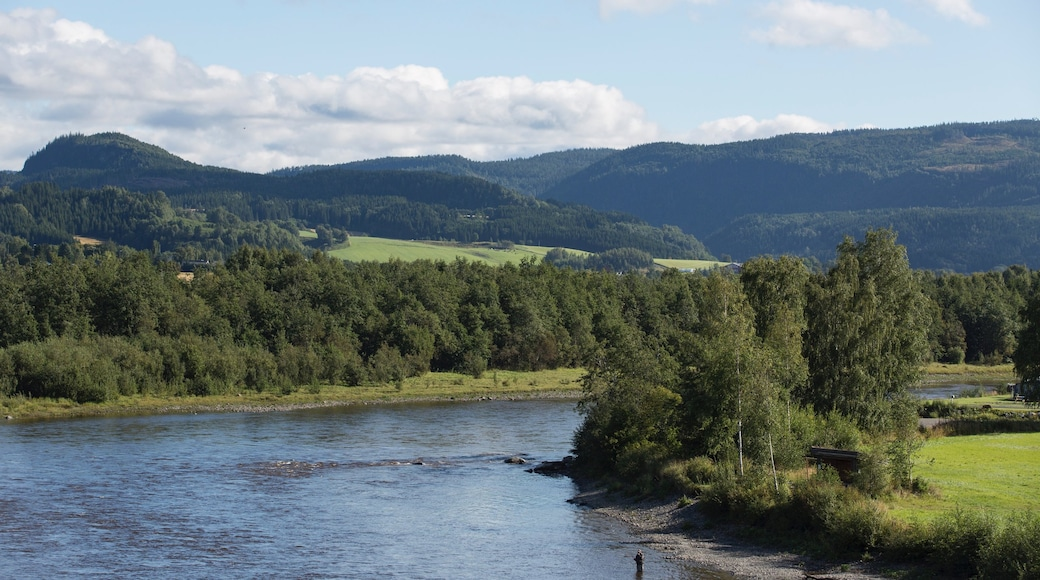 Stjørdal som inkluderer elv eller bekk, landskap og rolig landskap