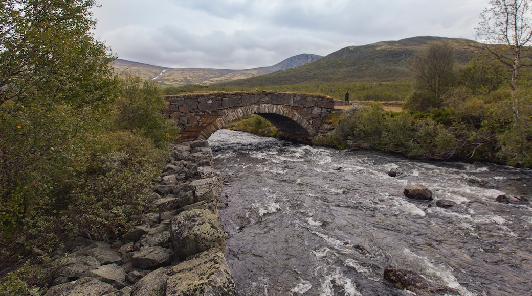 Dombås das einen Fluss oder Bach, ruhige Szenerie und Brücke