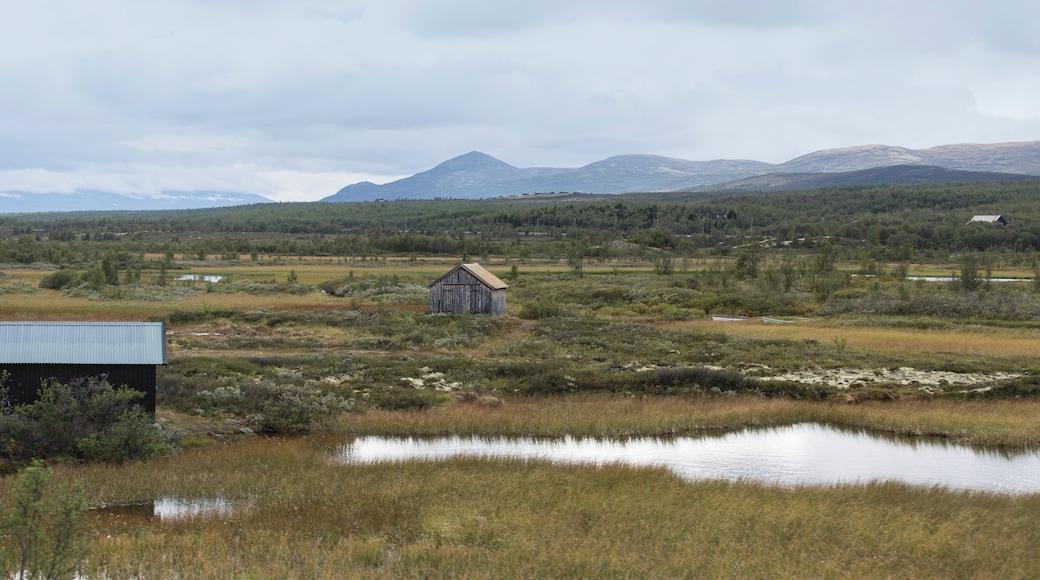 Dombås das einen ruhige Szenerie und Landschaften