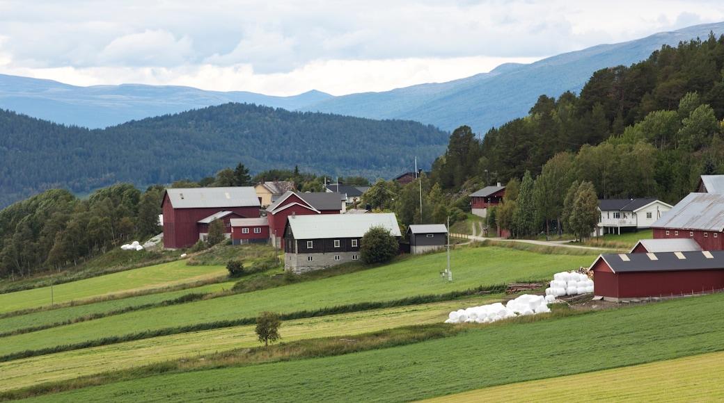 Dombås das einen Kleinstadt oder Dorf und ruhige Szenerie