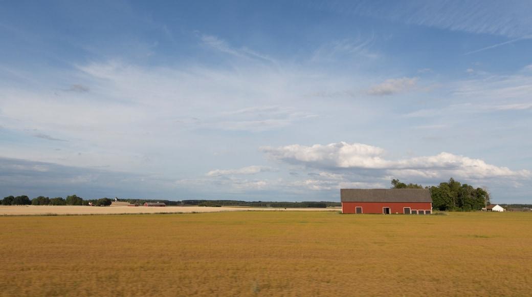 Linköping som inkluderar åkrar och landskap