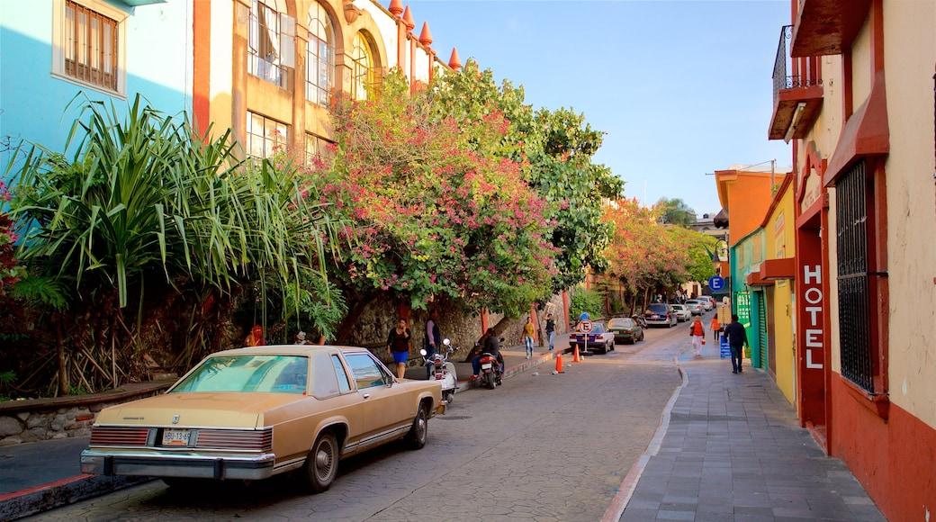 Cuernavaca mostrando señalización