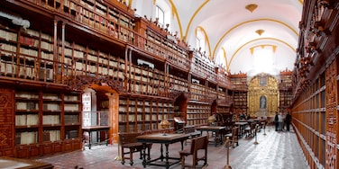 Palafoxiana-Bibliothek das einen Geschichtliches und Innenansichten