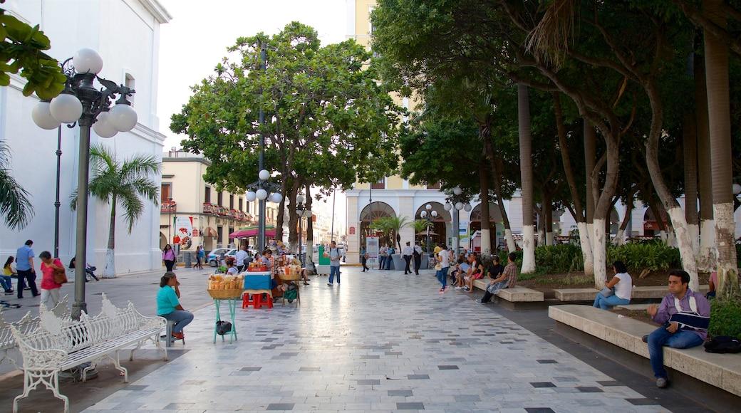 Veracruz which includes a square or plaza