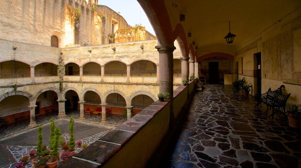 Catedral de Cuernavaca das einen Blumen und Geschichtliches