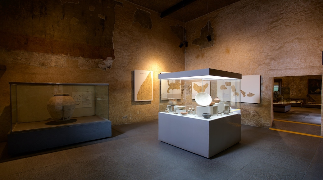 Palace of Cortes Museum showing interior views