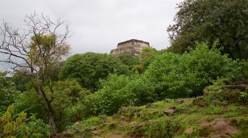 Pirámide de Tepozteco mostrando escenas tranquilas y elementos del patrimonio