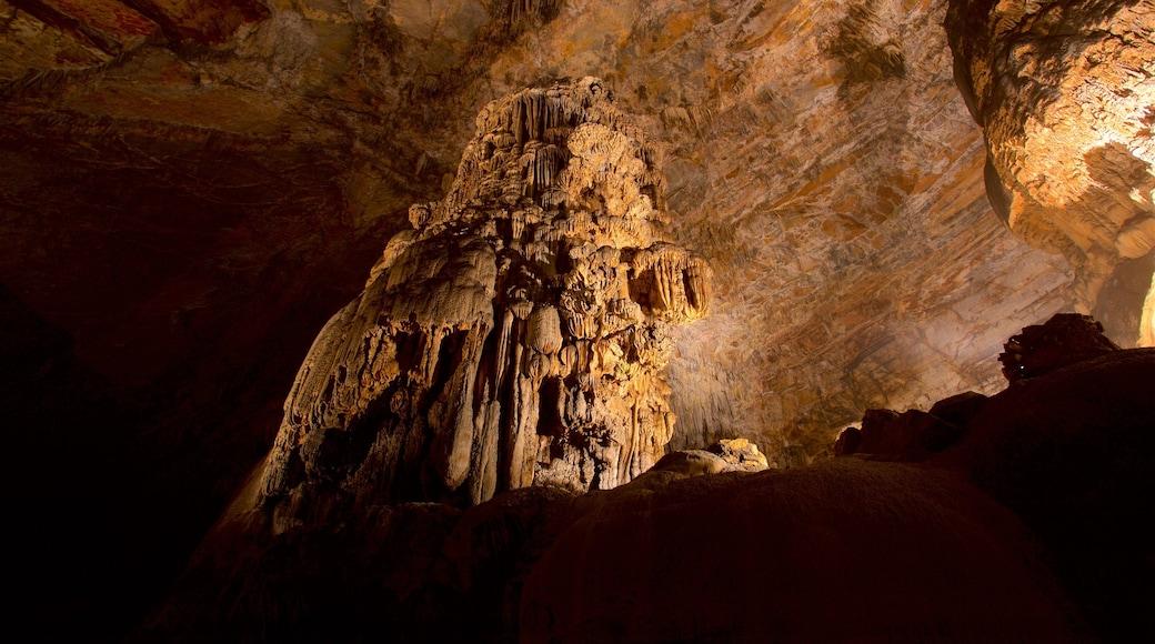 Grutas de Cacahuamilpa National Park que incluye vistas interiores y cuevas