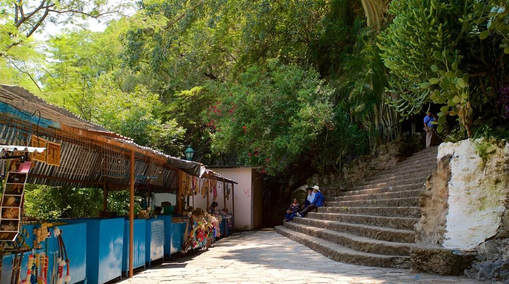 Grutas de Cacahuamilpa National Park ofreciendo un jardín