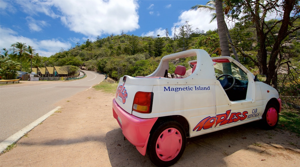 Magnetic Island featuring tropical scenes and signage