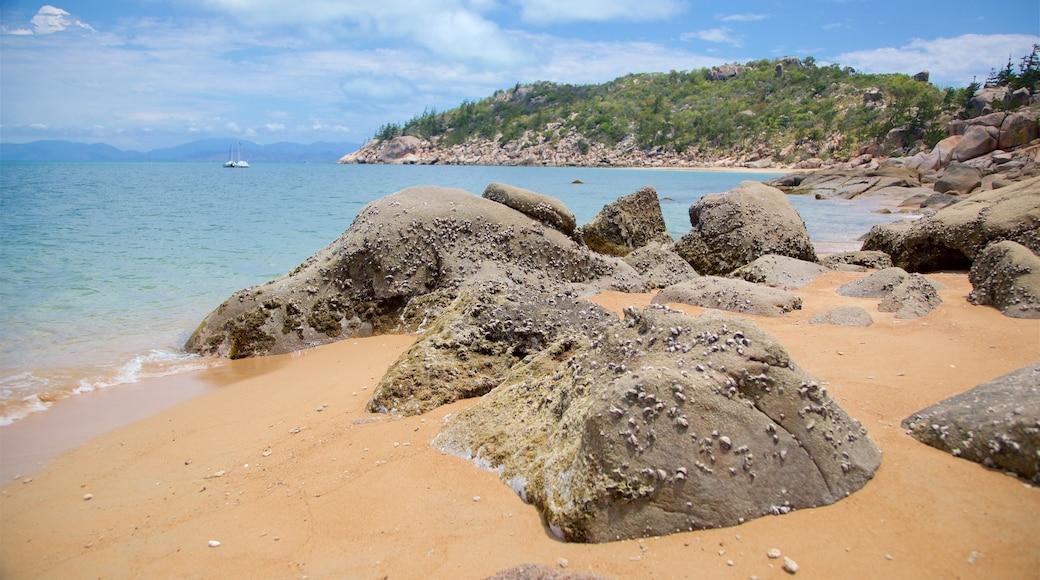 Nelly Bay showing rocky coastline, general coastal views and a beach