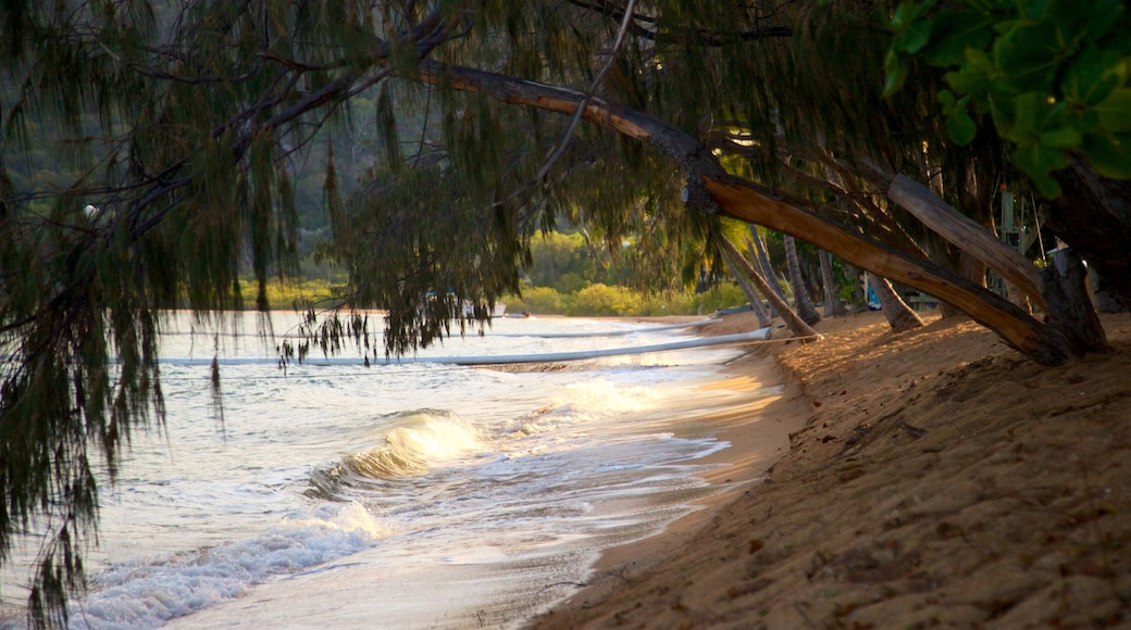 Magnetic Island featuring a sandy beach and general coastal views