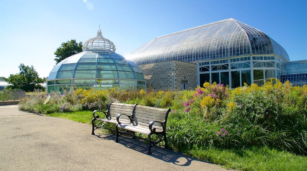 Phipps Conservatory que inclui flores silvestres e um parque