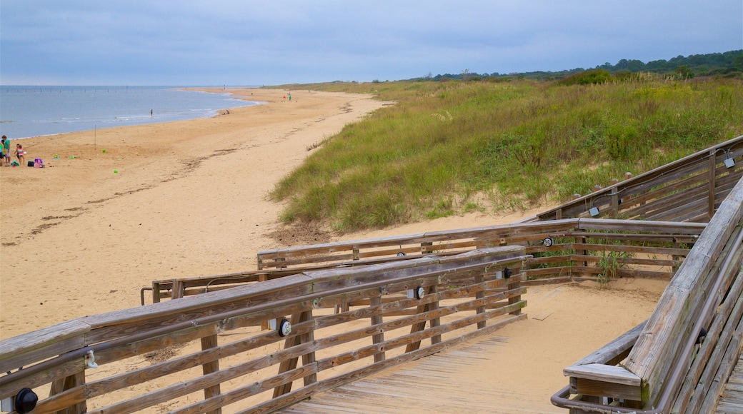 First Landing State Park showing a sandy beach and general coastal views