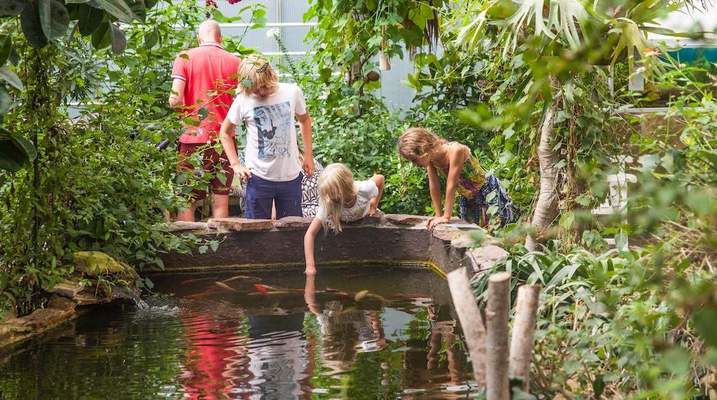 Bornholm som omfatter en park og en dam såvel som børn