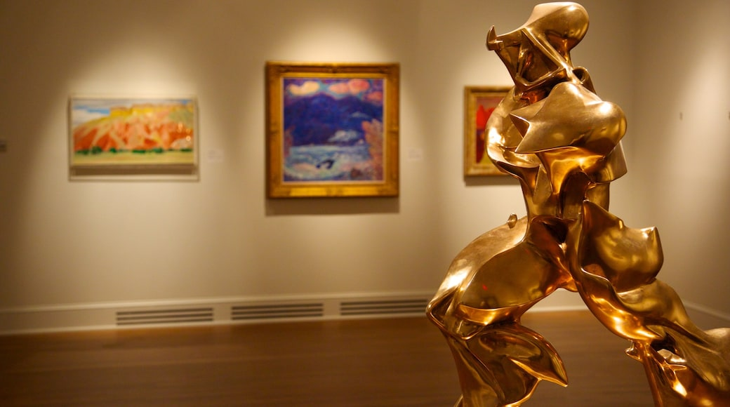 New Orleans Museum of Art showing interior views and art