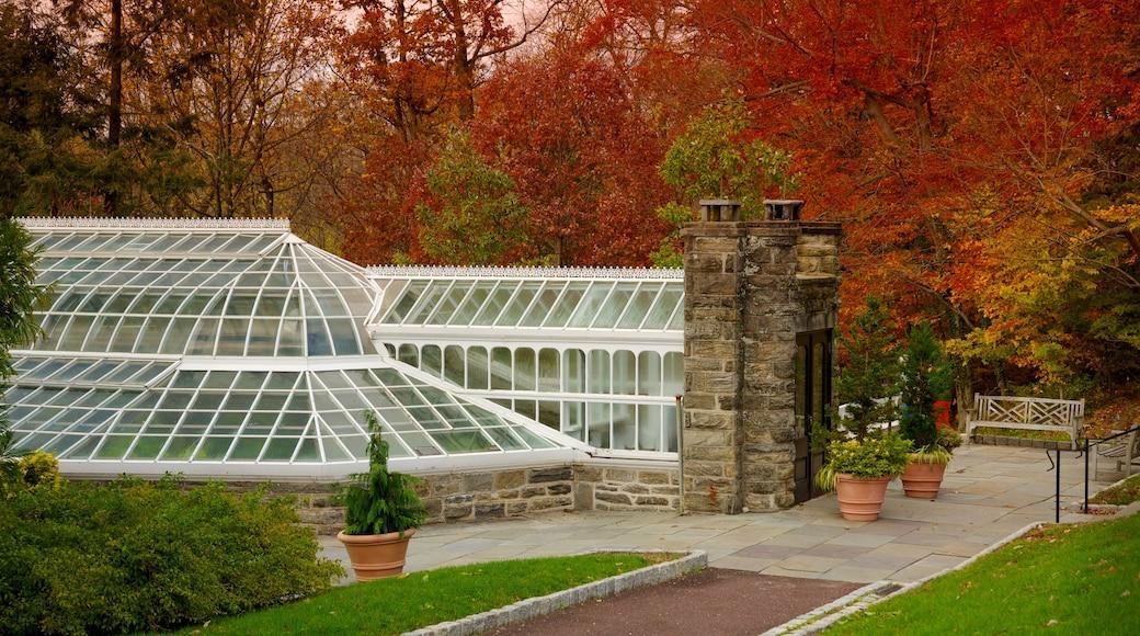 Morris Arboretum featuring autumn leaves and a garden