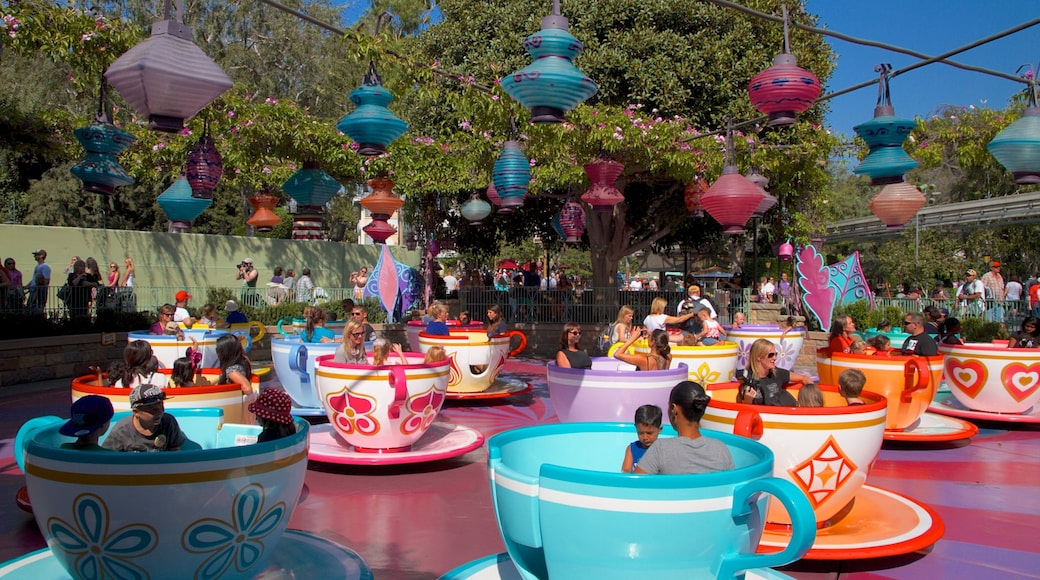 Disneyland® Park showing rides as well as a large group of people