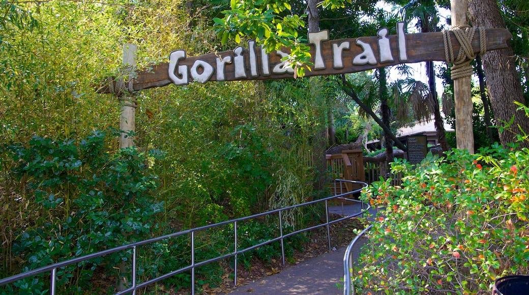 Zoológico de Dallas que incluye animales del zoológico y señalización