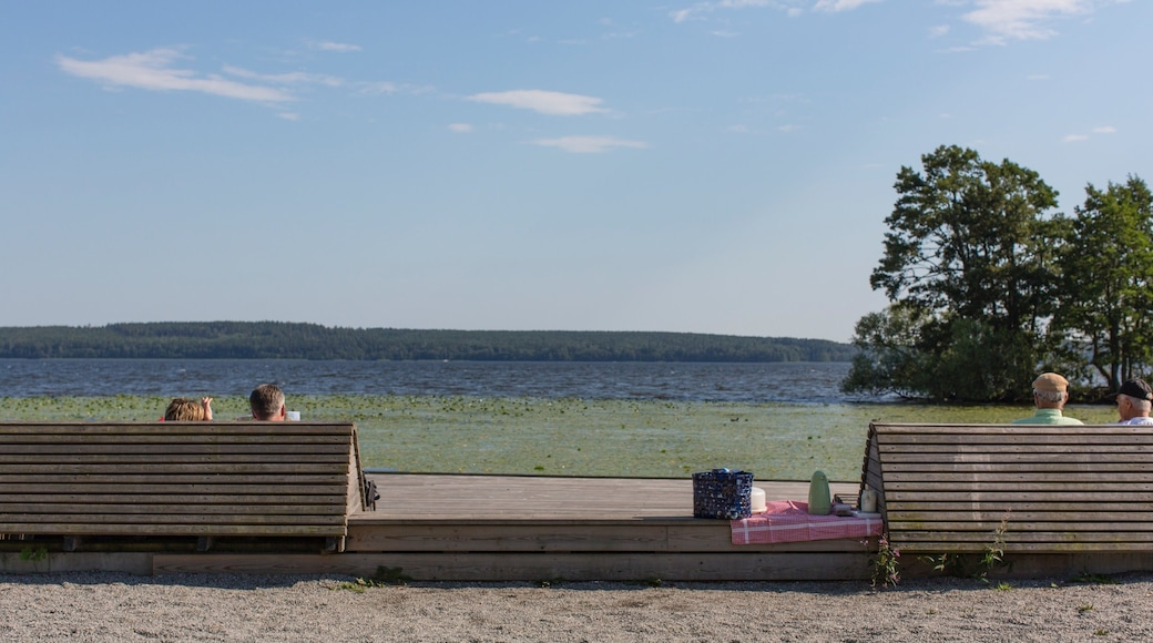 Sigtuna which includes a lake or waterhole as well as a small group of people